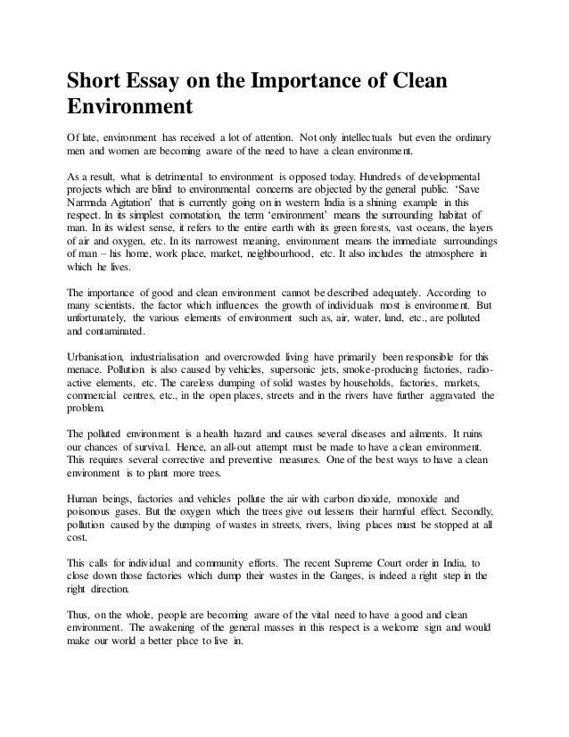 essay on environment pollution