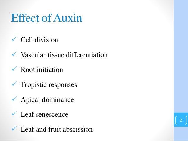 auxin essential plant hormones Plant hormones (phytohormones) on manic botanix the complexities and cross-talk between phytohormones such as auxins, gibberellins and cytokinins.