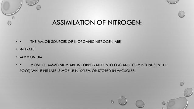 nitrate and ammonium assimilation in plants pdf