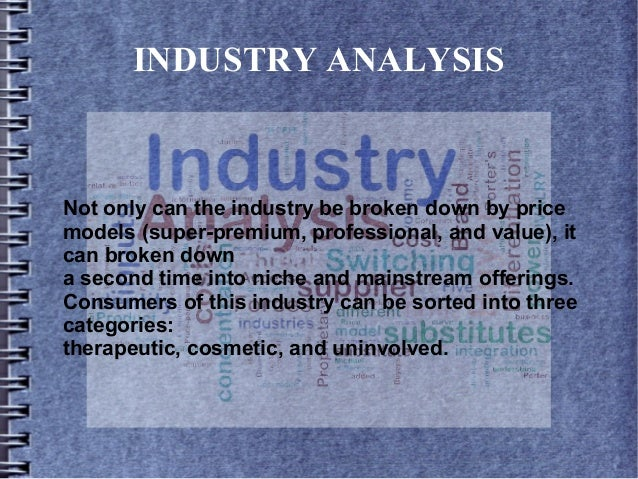 INDUSTRY ANALYSIS Not only can the industry be broken down by price models (super-premium, professional, and value), it ca...