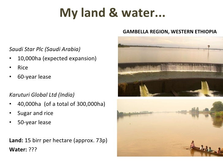 My land & water... <ul><li>Saudi Star Plc (Saudi Arabia) </li></ul><ul><li>10,000ha (expected expansion) </li></ul><ul><li...