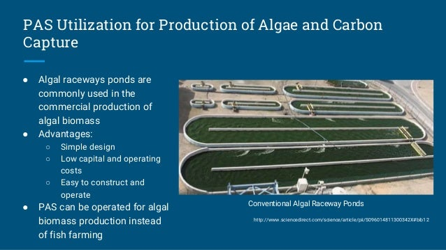Design Of A Partitioned Aquaculture System
