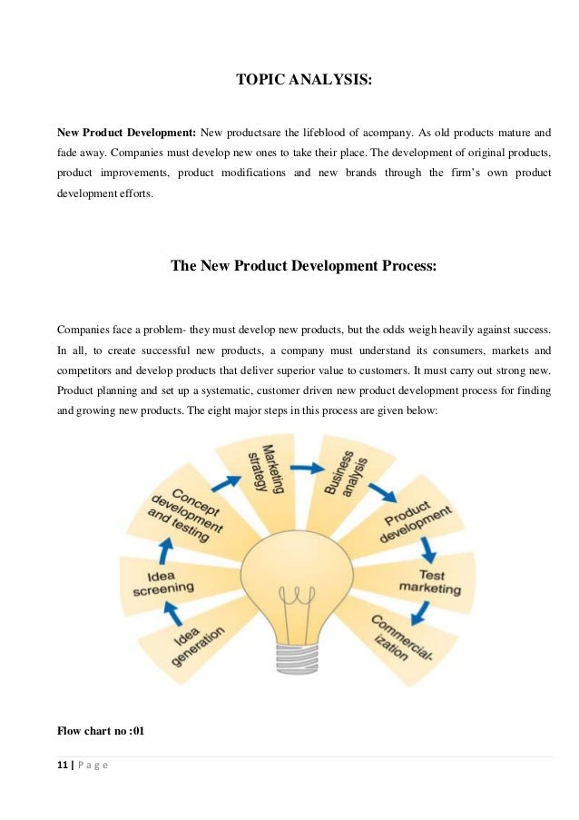 essay on new product development
