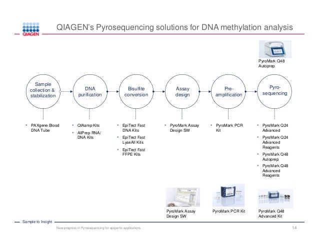 New Progress in Pyrosequencing for DNA Methylation