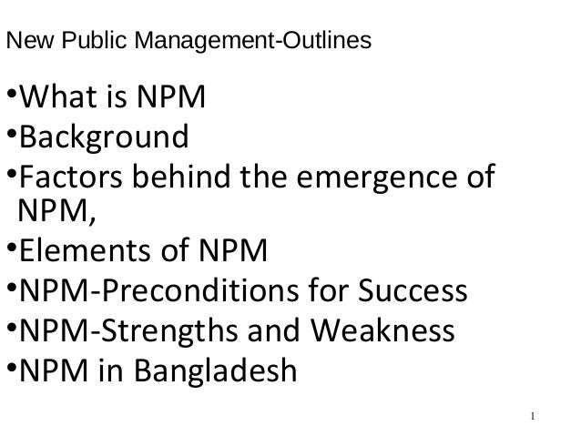 new public management thesis