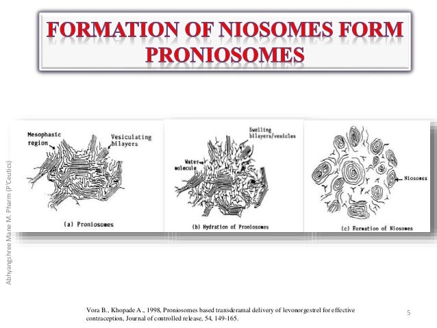 A review on proniosomal drug delivery system for targeted ...