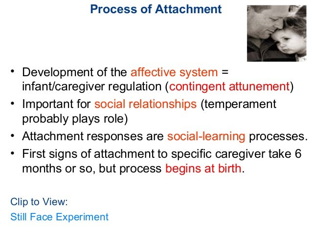 evidence of the attachment theory The origins of attachment theory: john bowlby and mary ainsworth inge bretherton attachment theory is the joint work of john bowlby and mary ainsworth (ainsworth.