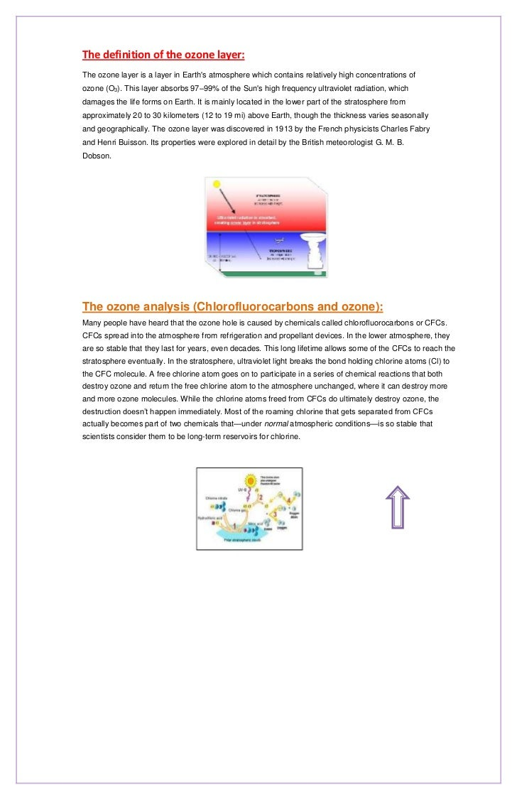 Newsletter the ozone