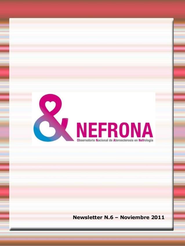 Newsletter N.6 – Noviembre 2011