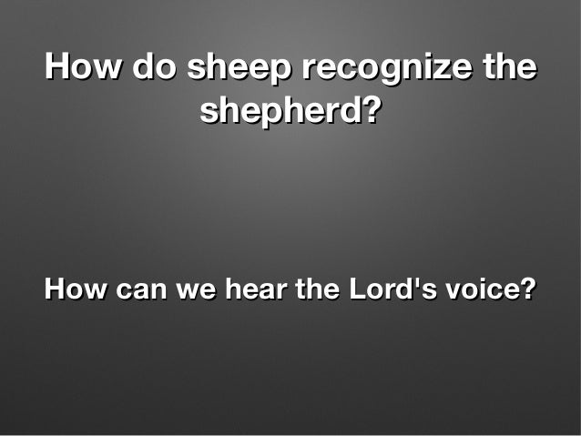 How do sheep recognize theHow do sheep recognize the shepherd?shepherd? How can we hear the Lord's voice?How can we hear t...