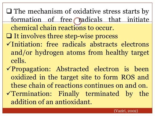 OXIDATIVE STRESS MECHANISM IN HYPERTENSION