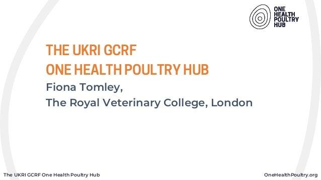 The UKRI GCRF One Health Poultry Hub OneHealthPoultry.org THE UKRI GCRF ONE HEALTH POULTRY HUB Fiona Tomley, The Royal Vet...