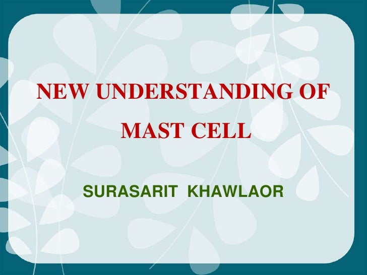 NEW UNDERSTANDING OF      MAST CELL   SURASARIT KHAWLAOR