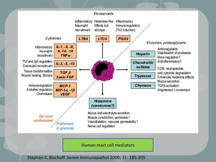 New understanding mast cell function