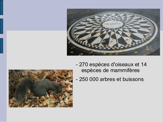 - 270 espèces d'oiseaux et 14 espèces de mammifères - 250 000 arbres et buissons
