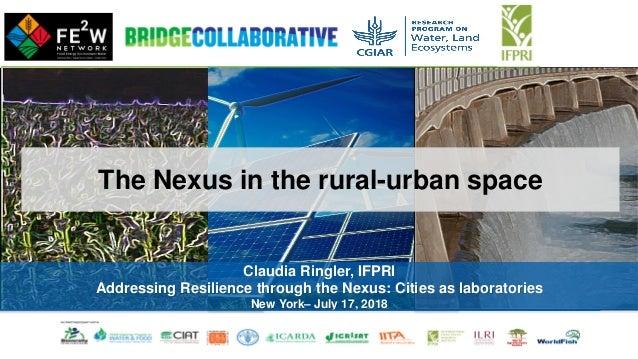 Claudia Ringler, IFPRI Addressing Resilience through the Nexus: Cities as laboratories New York– July 17, 2018 The Nexus i...