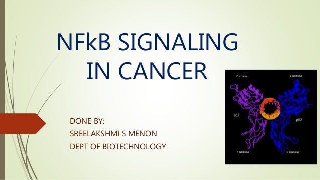 NFkB SIGNALING IN CANCER DONE BY: SREELAKSHMI S MENON DEPT OF BIOTECHNOLOGY