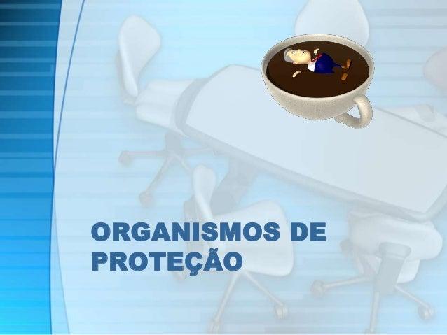ORGANISMOS DE  PROTEÇÃO
