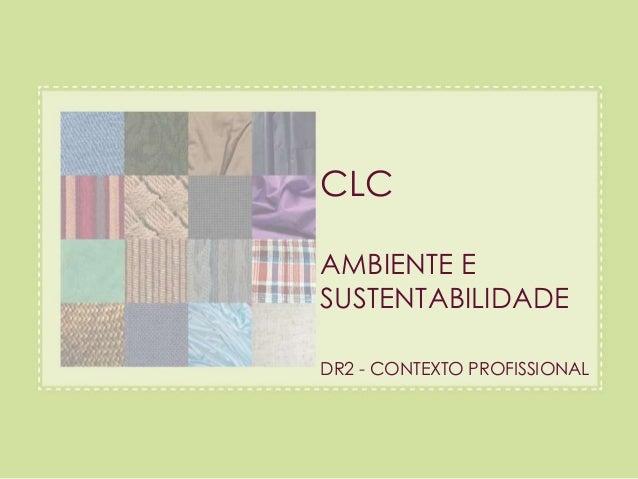 CLC  AMBIENTE E  SUSTENTABILIDADE  DR2 - CONTEXTO PROFISSIONAL