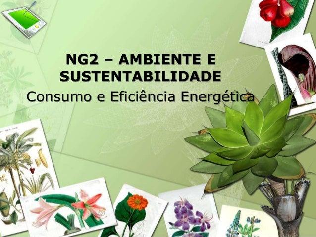 NG2 – AMBIENTE E  SUSTENTABILIDADE  Consumo e Eficiência Energética