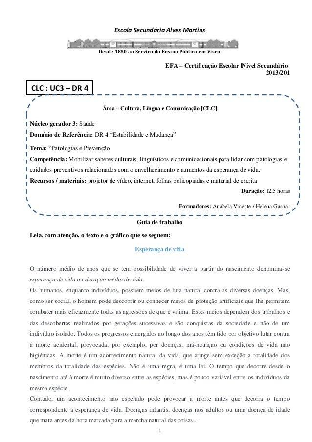 1 Escola Secundária Alves Martins Desde 1850 ao Serviço do Ensino Público em Viseu EFA – Certificação Escolar  Nível Secun...