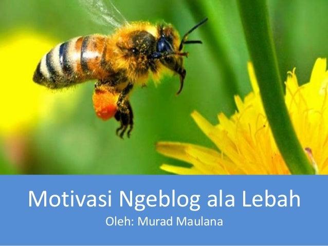 Motivasi Ngeblog ala Lebah Oleh: Murad Maulana