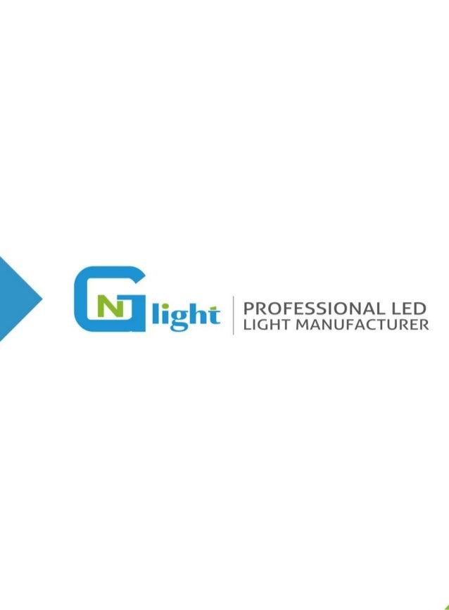 1     PROFESSIONAL LED  .5   ' LIGHT MANUFACTURER