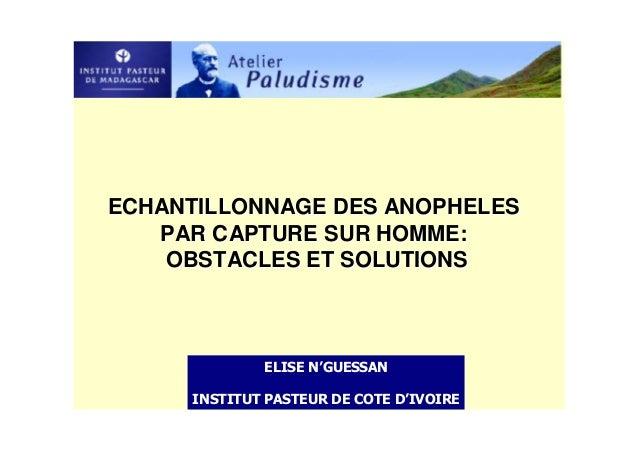 ECHANTILLONNAGE DES ANOPHELES   PAR CAPTURE SUR HOMME:    OBSTACLES ET SOLUTIONS
