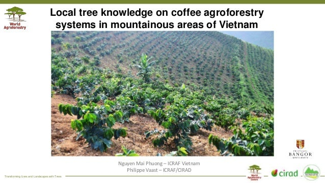Transforming Lives and Landscapes with Trees Local tree knowledge on coffee agroforestry systems in mountainous areas of V...