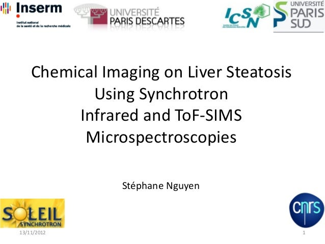 Chemical Imaging on Liver Steatosis Using Synchrotron Infrared and ToF-SIMS Microspectroscopies 113/11/2012 Stéphane Nguyen
