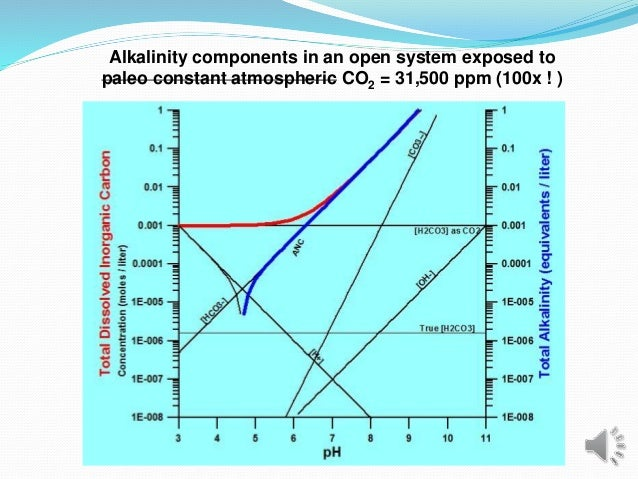 Alkalinity components in an open system exposed to paleo constant atmospheric CO2 = 31,500 ppm (100x ! )