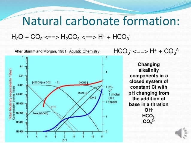 Natural carbonate formation: H2O + CO2 <==> H2CO3 <==> H+ + HCO3 - HCO3 - <==> H+ + CO3 2-After Stumm and Morgan, 1981, Aq...