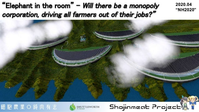 """""""Elephant in the room"""" - Will there be a monopoly corporation, driving all farmers out of their jobs?"""" 2020.04 """"NH2020"""""""