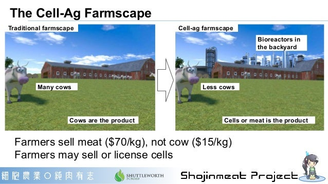 Business models of meat in cell-ag era Fabless farmers Contract farmer Lend cows Meat brewery Sends cells Sells meat Fable...