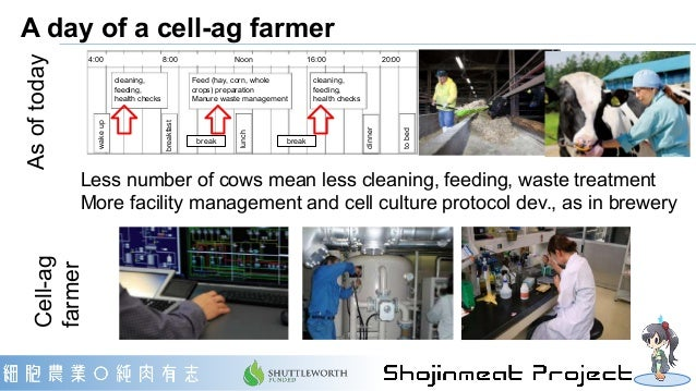 Urban Cell-Ag Farmscape One cow is sufficient Unnoticeable biopsy: Hair cells to stem cells, Stem cells to everything Farm...