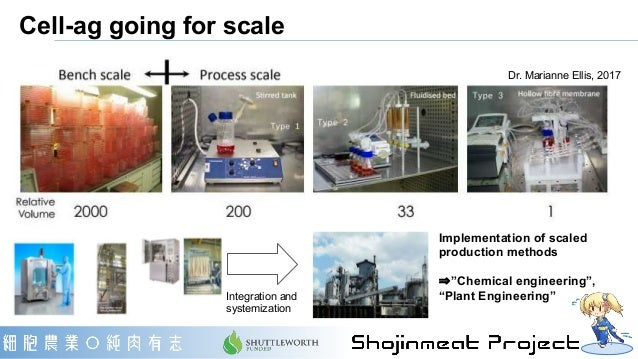 """Dr. Marianne Ellis, 2017 Implementation of scaled production methods ⇒""""Chemical engineering"""", """"Plant Engineering""""Integrati..."""