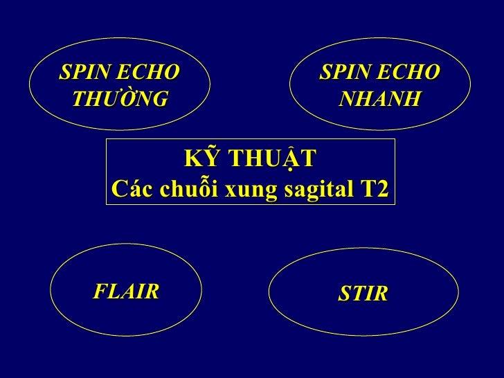 SPIN ECHO            SPIN ECHO THƯỜNG               NHANH         KỸ THUẬT   Các chuỗi xung sagital T2  FLAIR             ...