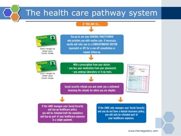 www.themegallery.com The health care pathway system