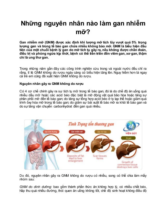 Những nguyên nhân nào làm gan nhiễm mỡ? Gan nhiễm mỡ (GNM) được xác định khi lượng mỡ tích lũy vượt quá 5% trọng lượng gan...