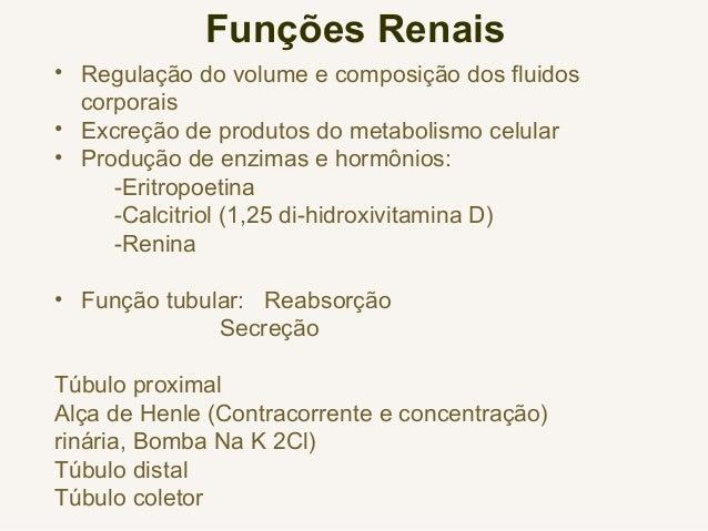Funções Renais • Regulação do volume e composição dos fluidos corporais • Excreção de produtos do metabolismo celular • Pr...