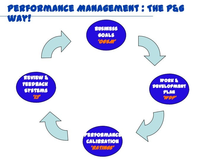 talent management system