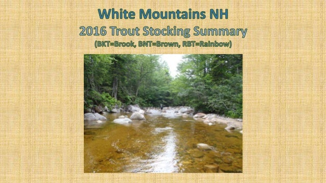 Trout Stocking In Nh