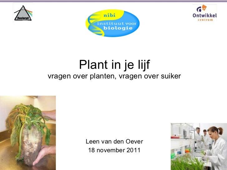 Plant in je lijf vragen over planten, vragen over suiker Leen van den Oever 18 november 2011