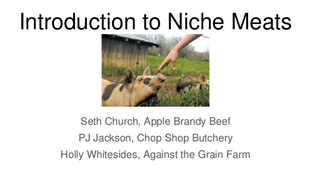 Introduction to Niche Meats Seth Church, Apple Brandy Beef PJ Jackson, Chop Shop Butchery Holly Whitesides, Against the Gr...
