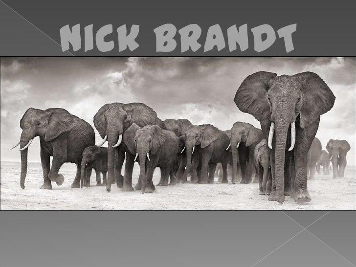 Nick BRANDT<br />