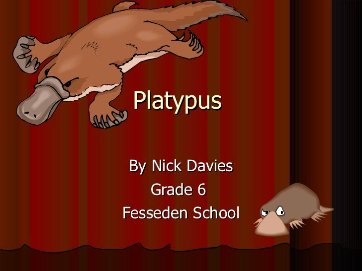 Platypus  By Nick Davies Grade 6  Fesseden School