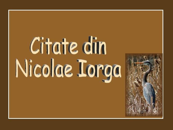 Citate din Nicolae Iorga