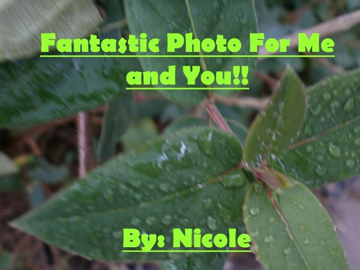 Fantastic Photo For Me      and You!!      By: Nicole