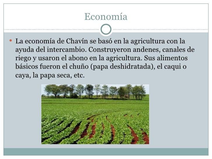 Economía <ul><li>La economía de Chavín se basó en la agricultura con la ayuda del intercambio. Construyeron andenes, canal...