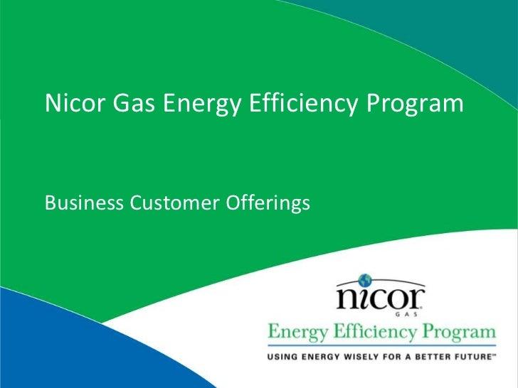 Nicor Gas Energy Efficiency Program<br />Business Customer Offerings<br />